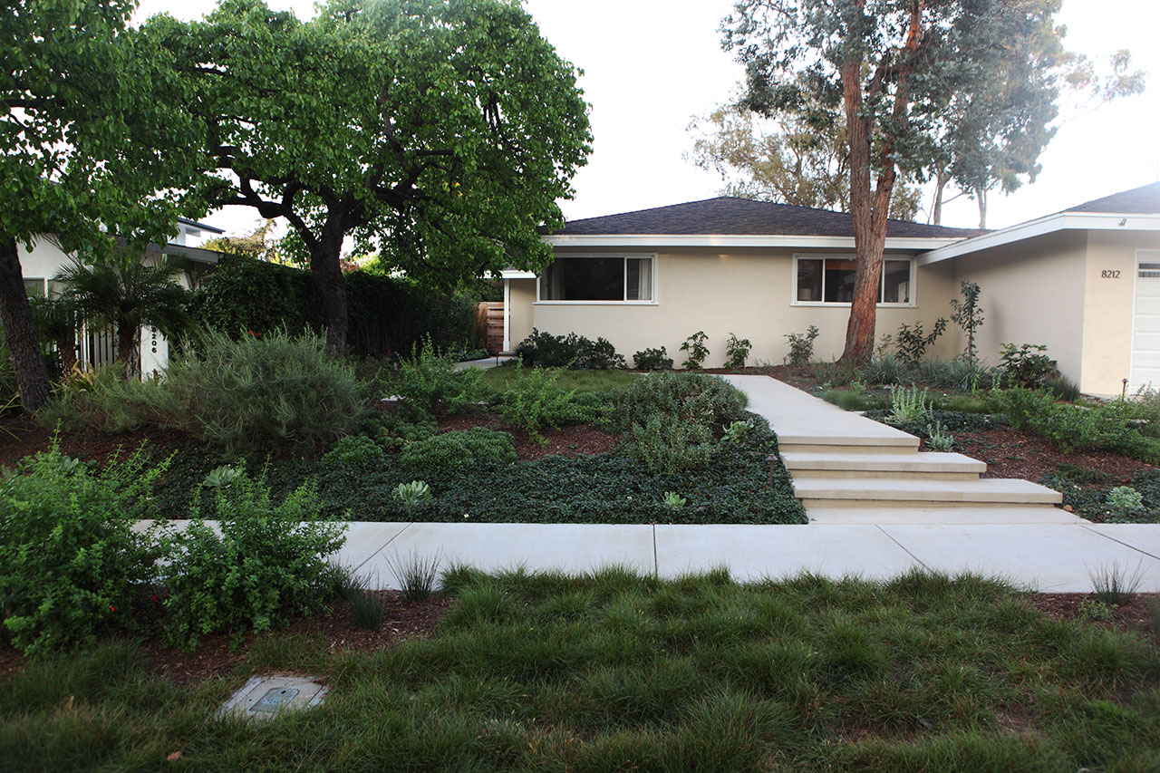 garden 32 in playa del rey | 2017 theodore payne native plant